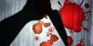बदले की भावना से की थी दोनों वकीलों की हत्या