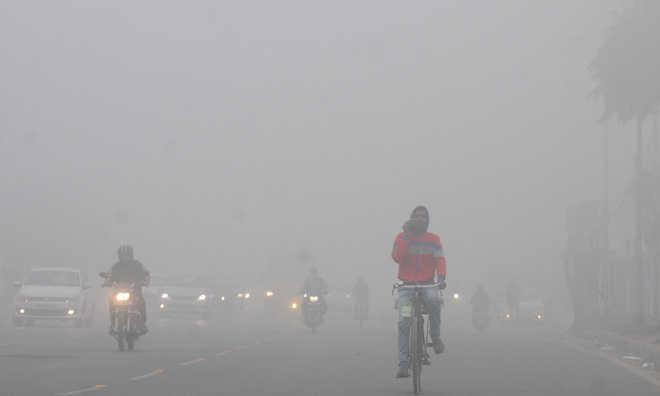 पंजाब, हरियाणा में कड़ाके की ठंड : नारनौल में पारा1.4 डिग्री, अमृतसर में 3.5 डिग्री सेल्सियस