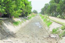 फसलों को पानी की दरकार अन्नदाता पर सूखे की मार