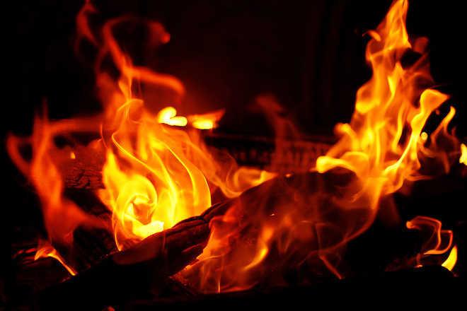 पंजाब, दिल्ली के सीएम का जलाया पुतला