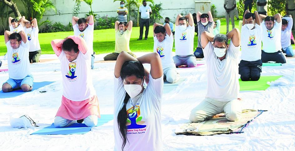 'मन की शांति, स्वस्थ रहने के लिये योग जरूरी'