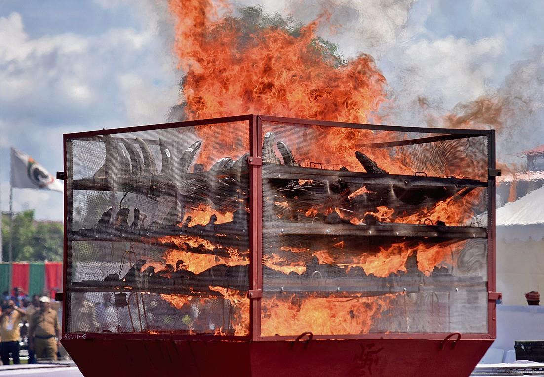 मिथक तोड़ने को जलाए गैंडों के 2,479 सींग